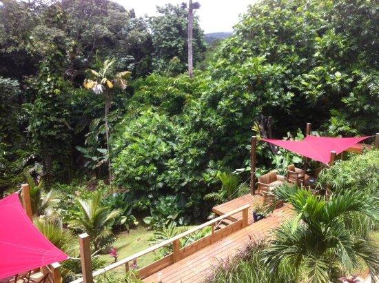 Petit-Bourg, Guadalupe: photo0.jpg