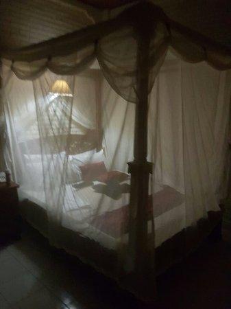 โรงแรมนิคเพนชั่น: 20160515_190521_large.jpg