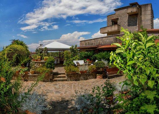 Villa Concetta: Garden