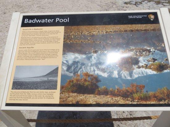 Badwater : photo4.jpg