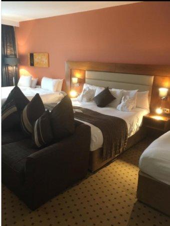 Athlone Springs Hotel รูปภาพ