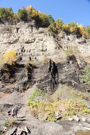 Trumansburg, NY: These rocks are amazing!