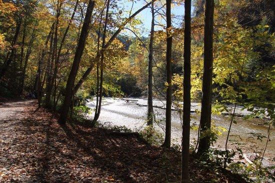 Trumansburg, estado de Nueva York: Following the river