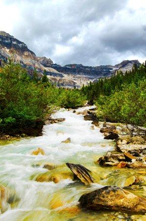 Shadow Lake Lodge: Mountain stream upstream of Shadow Lake
