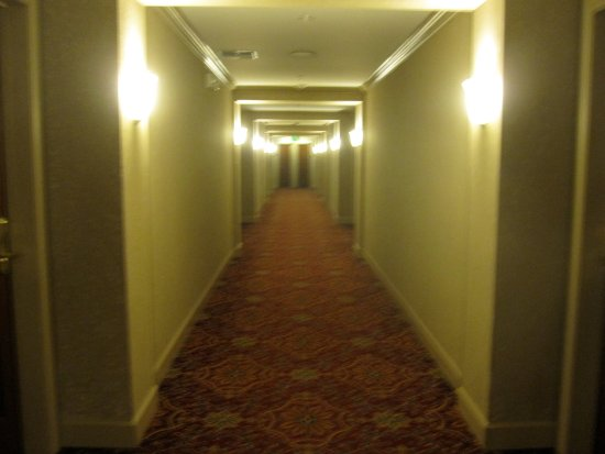 Hotel Bellwether: Hallway...actually looks way better than this.