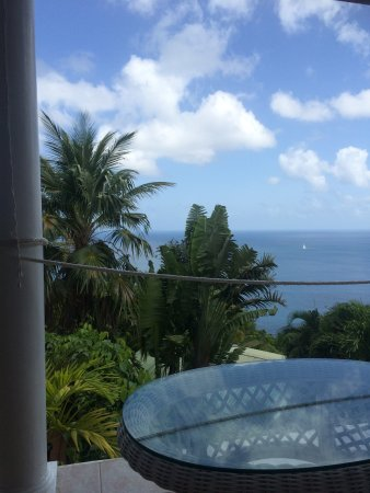 Nature's Paradise: balcony sitting area