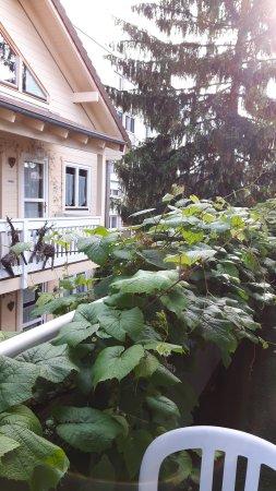 Logis A La Villa Boucicaut Foto