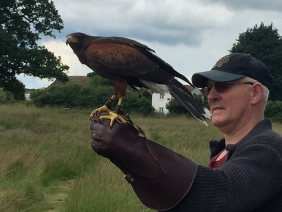 Quedgeley, UK: Wonderful day, brilliant people and amazing birds.