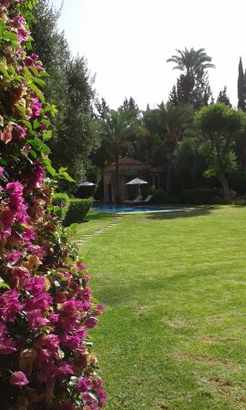 Dar Zemora: La grande piscine