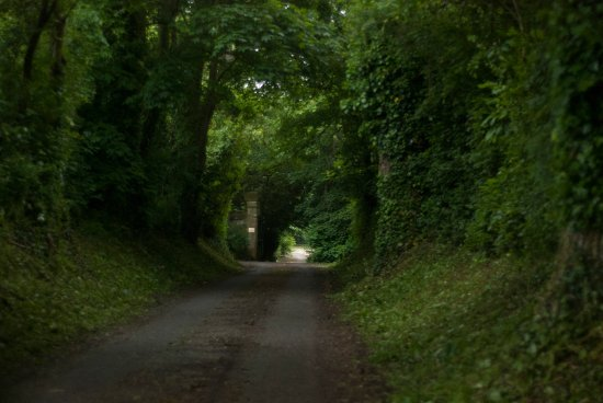 Saint-Martin-des-Entrees, Francja: private road to the Chateau