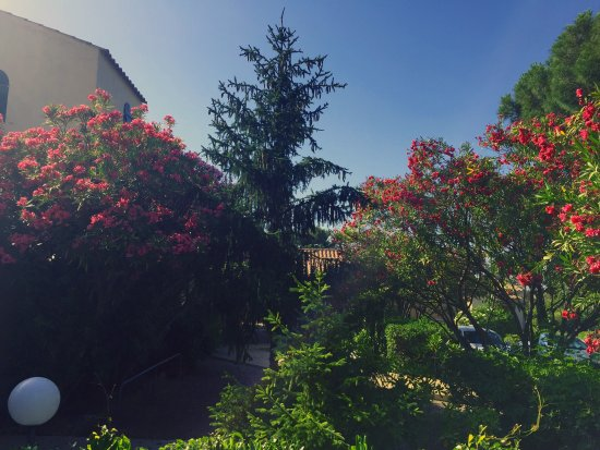 Le Vieux Moulin : jardin