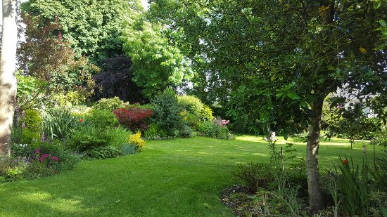 Moretonhampstead, UK: 20160624_172848_large.jpg