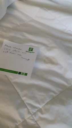 Holiday Inn Winnipeg South: stain on bed
