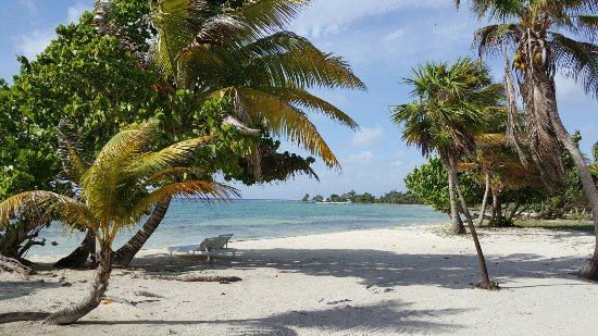 Turneffe Island, Belize: Blackbird Caye Resort