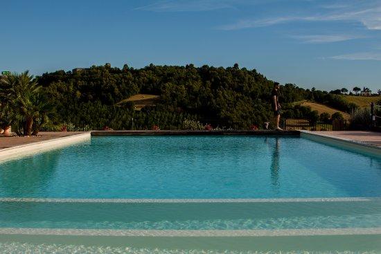 Agrileisuretime: A good sized pool.