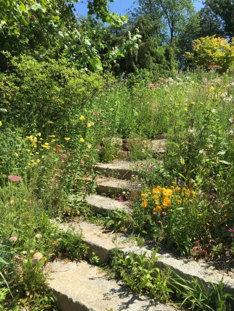 Wayne, Πενσυλβάνια: What's not to love about this beautiful garden?