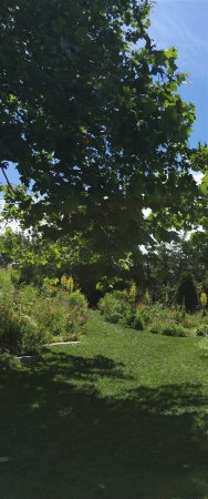 Wayne, PA: What's not to love about this beautiful garden?
