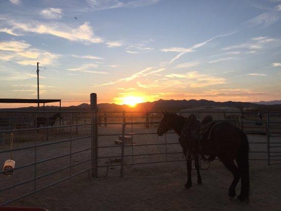 Yucca, AZ: photo1.jpg