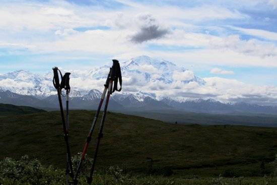 "Camp Denali: View from our ""Day One, Moderate Hike"""