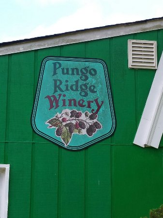 Pungo Vineyards
