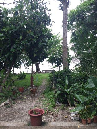 Cabuya, Κόστα Ρίκα: photo0.jpg