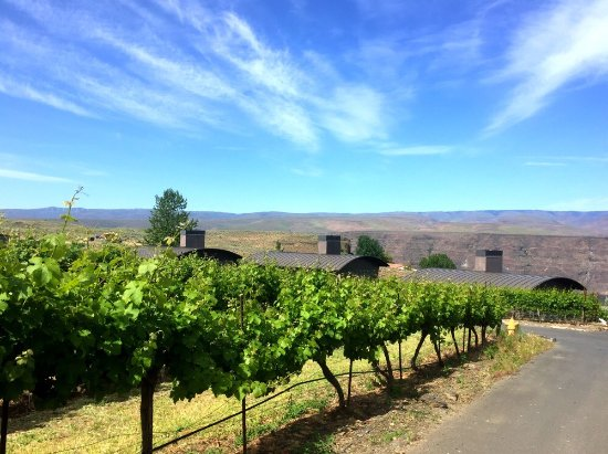 Quincy, WA: Cave B Estate Winery & Resort