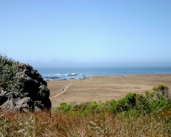 Cayucos, Californie : View from the car park to tide pools