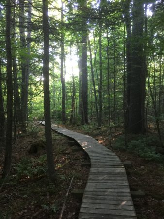 Washington, ME: Walk to the on property lake, Beautiful!
