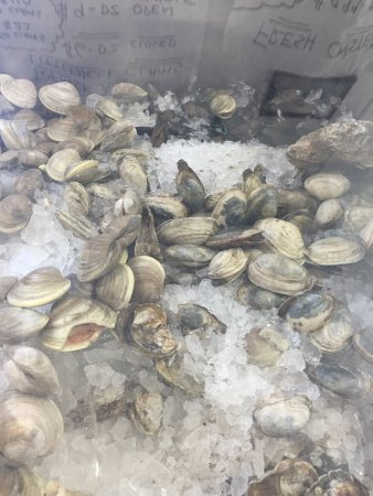 Keyport, NJ: The freshest fish and the line proved it