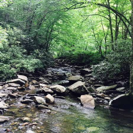 Roaring fork motor nature trail picture of roaring fork for Roaring fork smoky mountains
