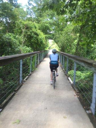 Bridge On Tammany Trace Picture Of Tammany Trace Covington