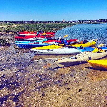 Great Marsh Kayak Tours: Lunch break