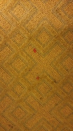 Quality Inn Richmond Airport: Disgusting carpet