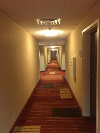 Courtyard Bridgeport Clarksburg : Very clean hallway