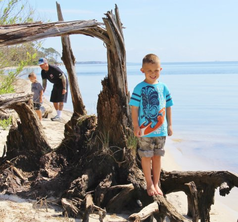 Naval Live Oaks Reservation: Out by the water