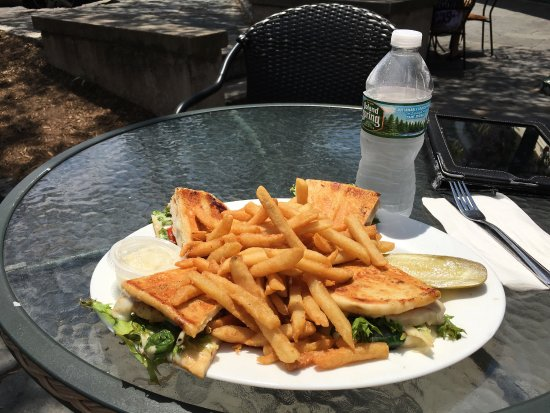 Village Diner: Chicken panini with fries