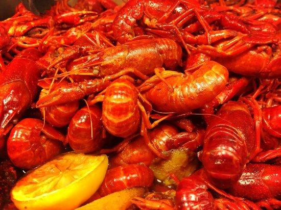 Carthage, TX: Crawfish
