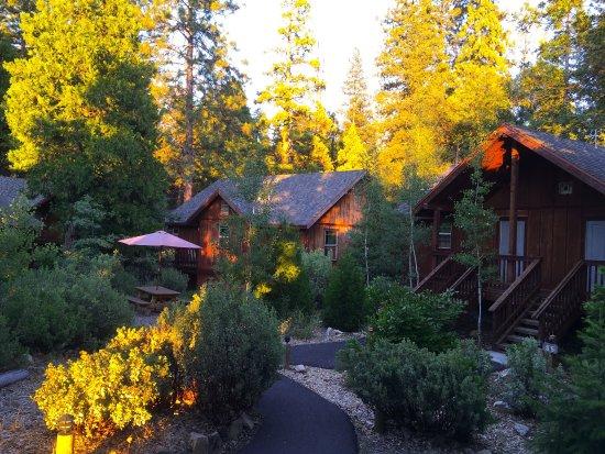 Evergreen Lodge at Yosemite: photo2.jpg