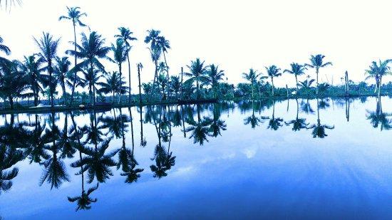 Kondai Lip Backwater Heritage Resort: IMG_20160612_175225_large.jpg