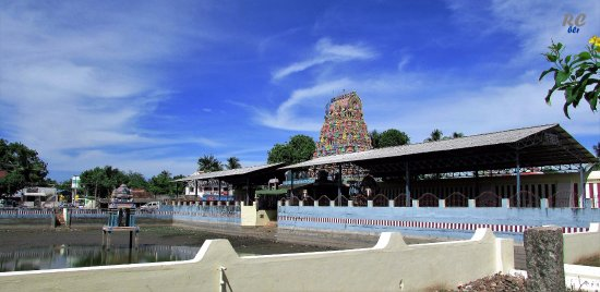 Thanjavur District, Индия: View of the temple tower and the holy pond