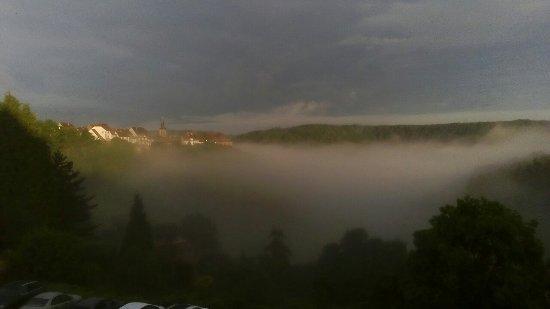 Hotel des Vosges: Room view