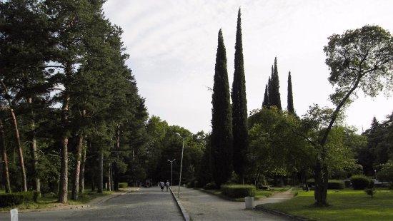 Sandanski, Bulgaristan: главная аллея