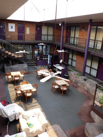 Garden Lodge Sydney : Atrium