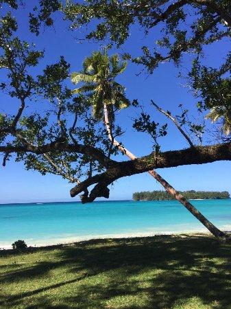 Снимок Barrier Beach House