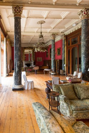 Bantry House B&B: The library