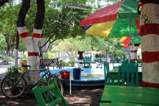 Hotel El Club: three blocks from the hotel: Parque Central
