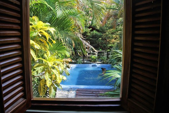 Hotel El Club: small pool in abundant greenery
