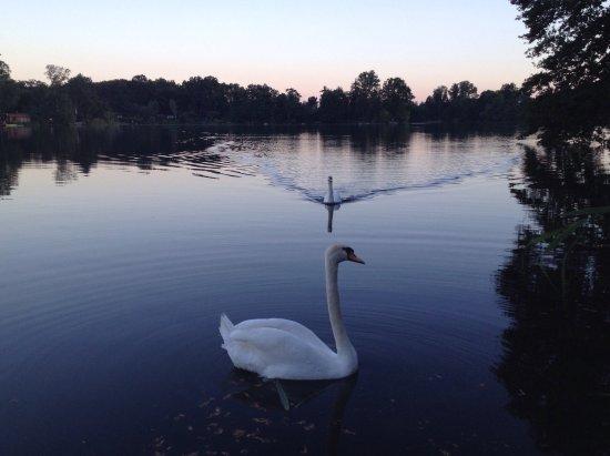Kahl am Main, ألمانيا: Wunderschöne Lage direkt am See!