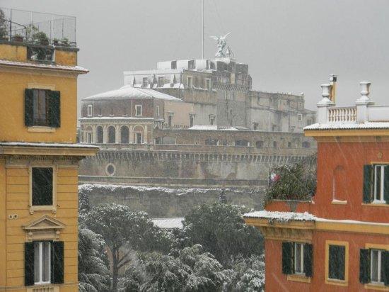 Domus Carmelitana: Roof garden