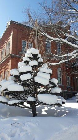 写真北海道庁旧本庁舎枚